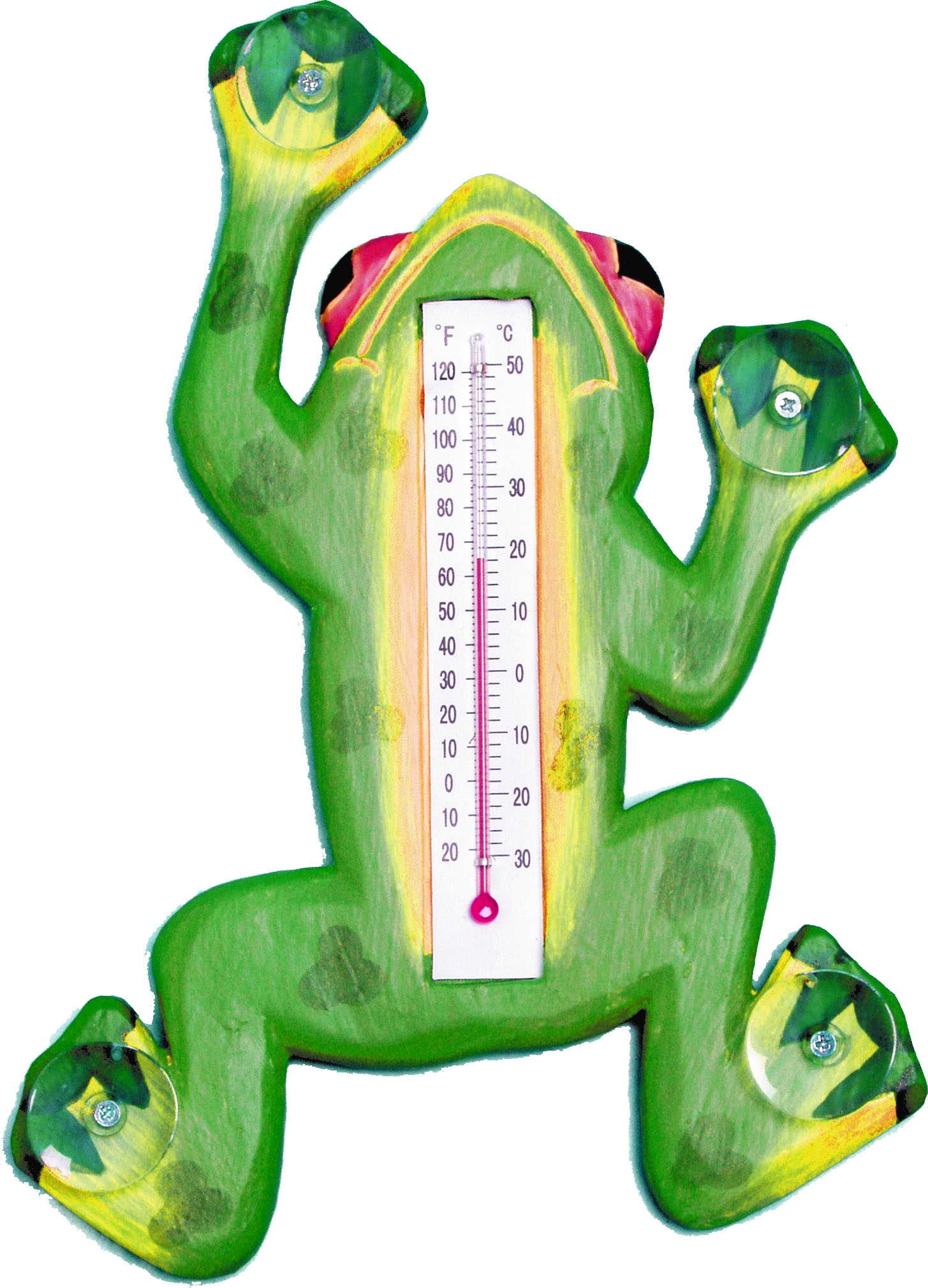 Climbing Green Frog Small Window Thermometer