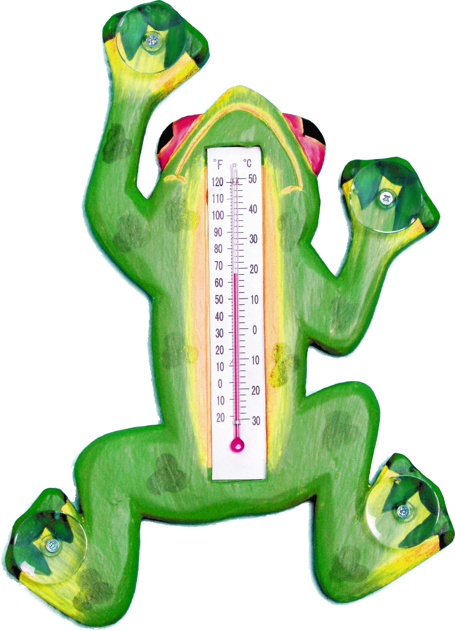 Climbing Green Frog Large Window Thermometer