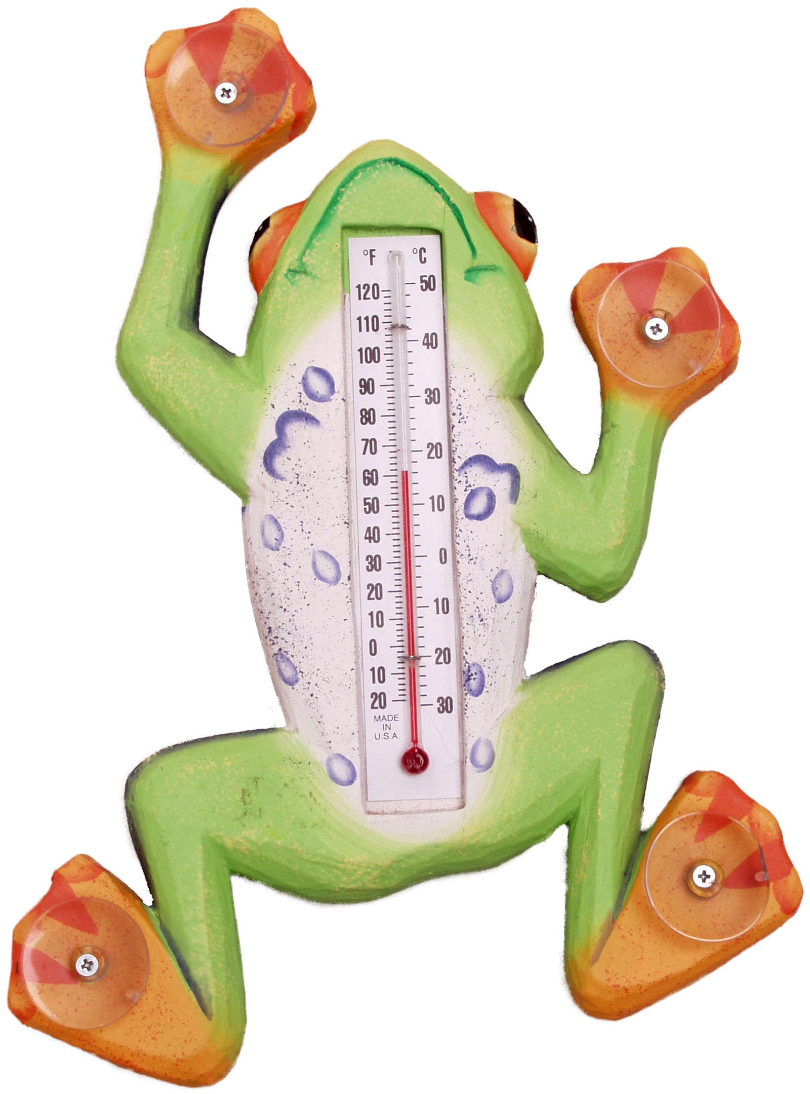 Climbing Tree Frog Large Window Thermometer