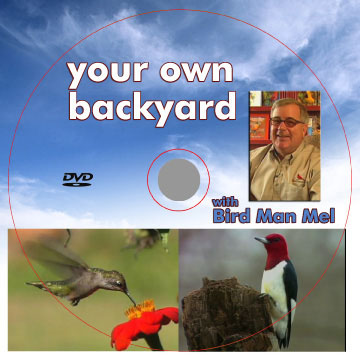 Mel's Backyard Birding Tips DVD West