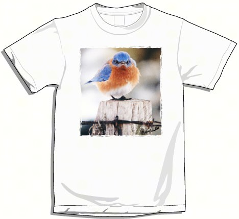 Small Mad Bluebird T-Shirt