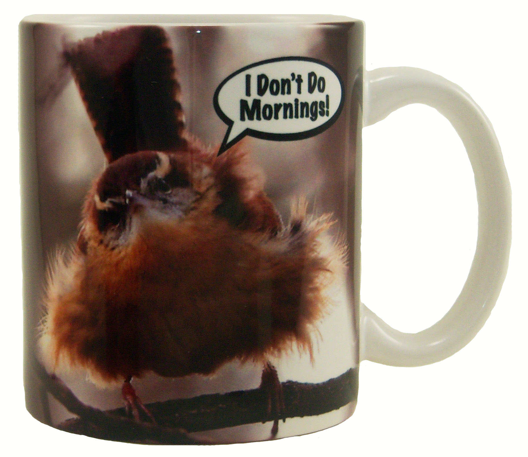 "Mug 11oz ""I Don't Do Mornings"""