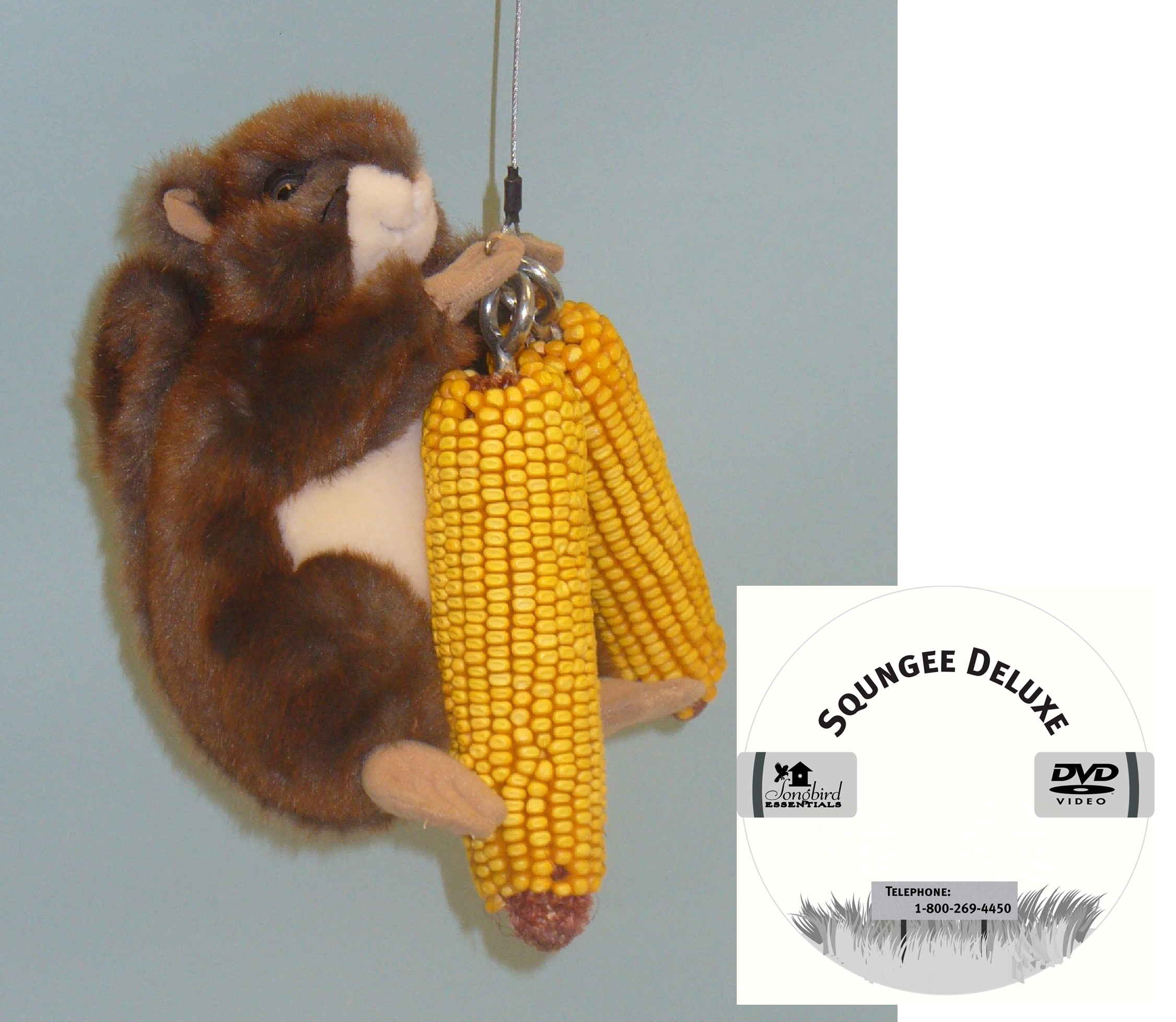 Squngee Display Pre Pak with Free Squirrel & DVD