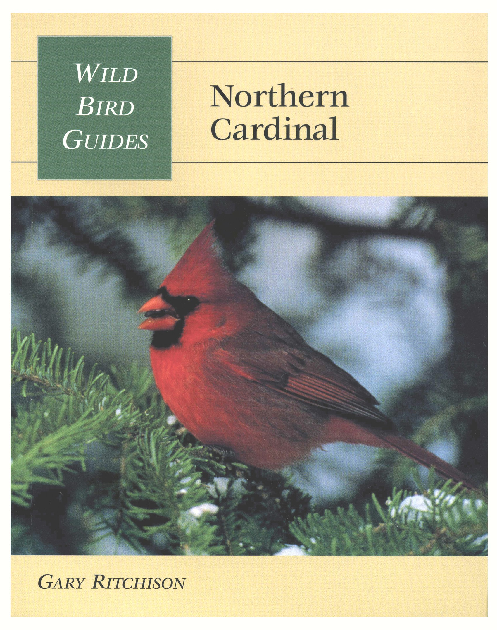 Wild Bird Guides Northern Cardinal
