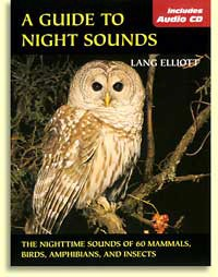 A Guide To Night Sounds with CD