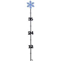 Taylor 98503 Weather Resistant Snow Gauge, 3-1/2 ft H, Steel, Powder Coated