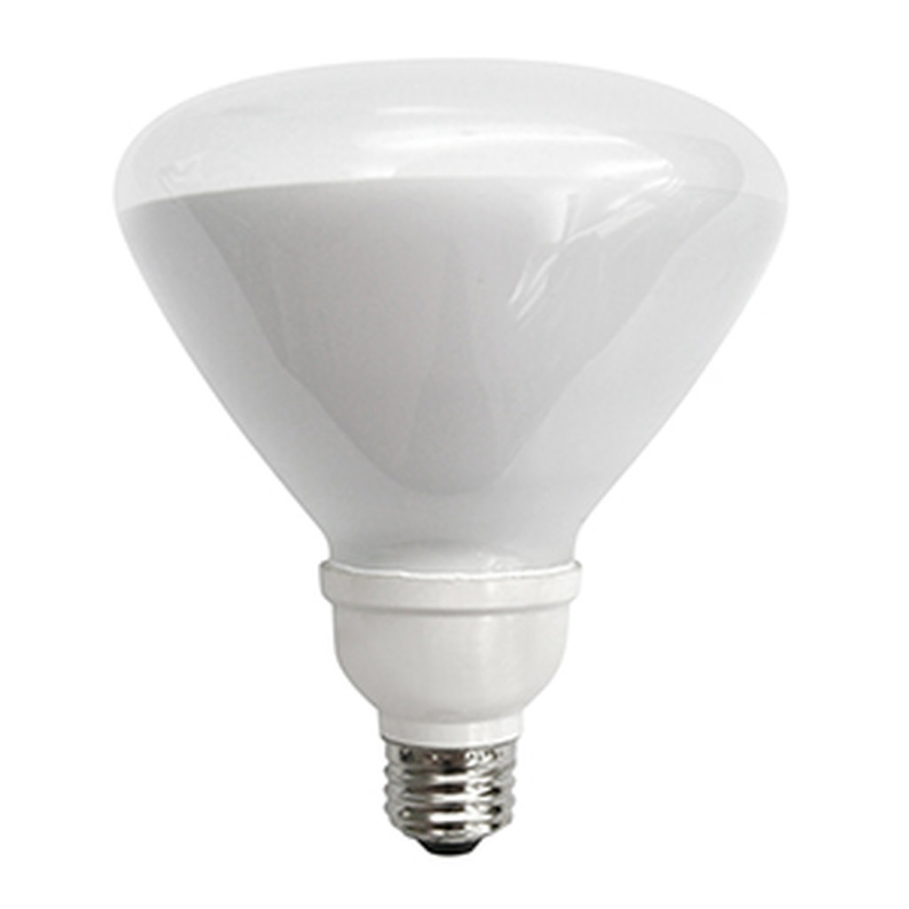 R40 TYPE 19 WATT COMPACT FLUORESCENT FLOODLIGHT
