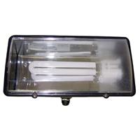 Teddico/BWF PFL13 Flood Light, Black Housing, 1 Lamps, 13 W Fixture, T20, Fluorescent Lamp, 120 V, GX23-2 Lamp Base