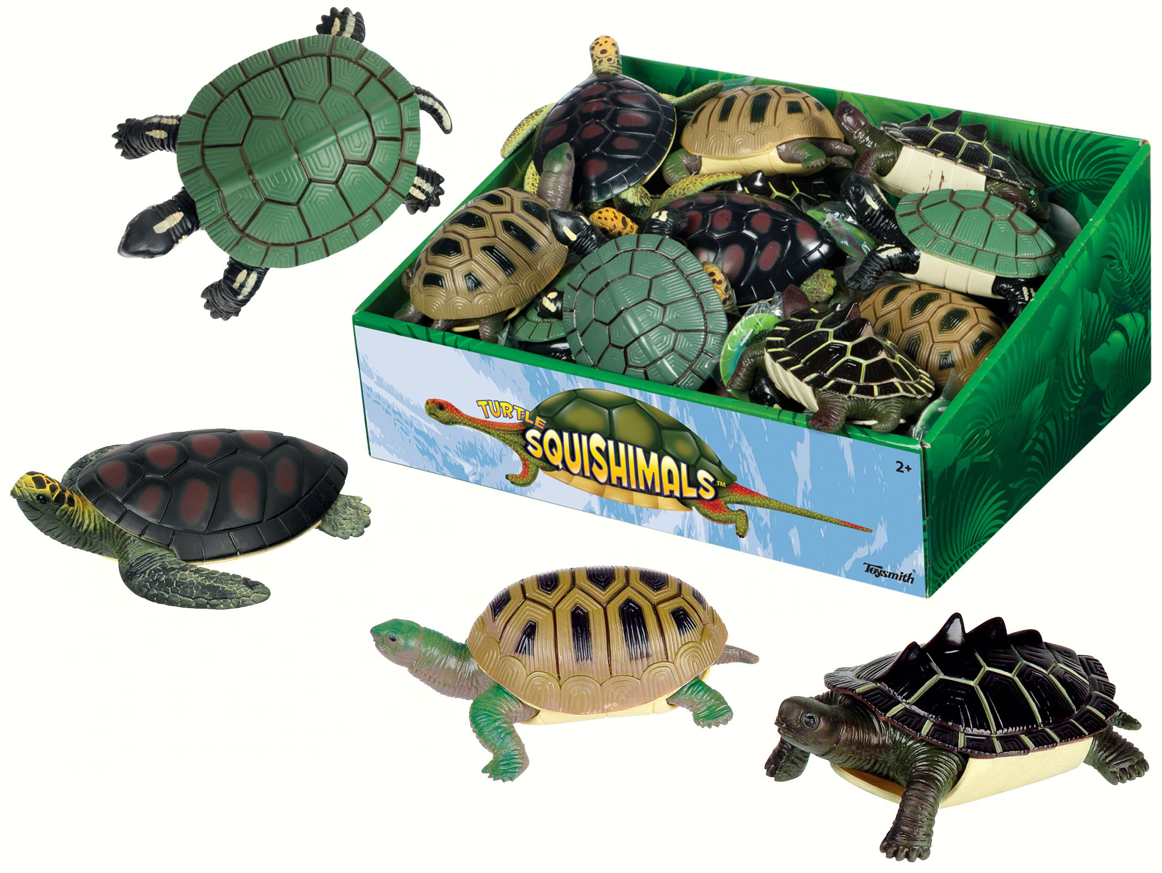 Turtle Squishimals