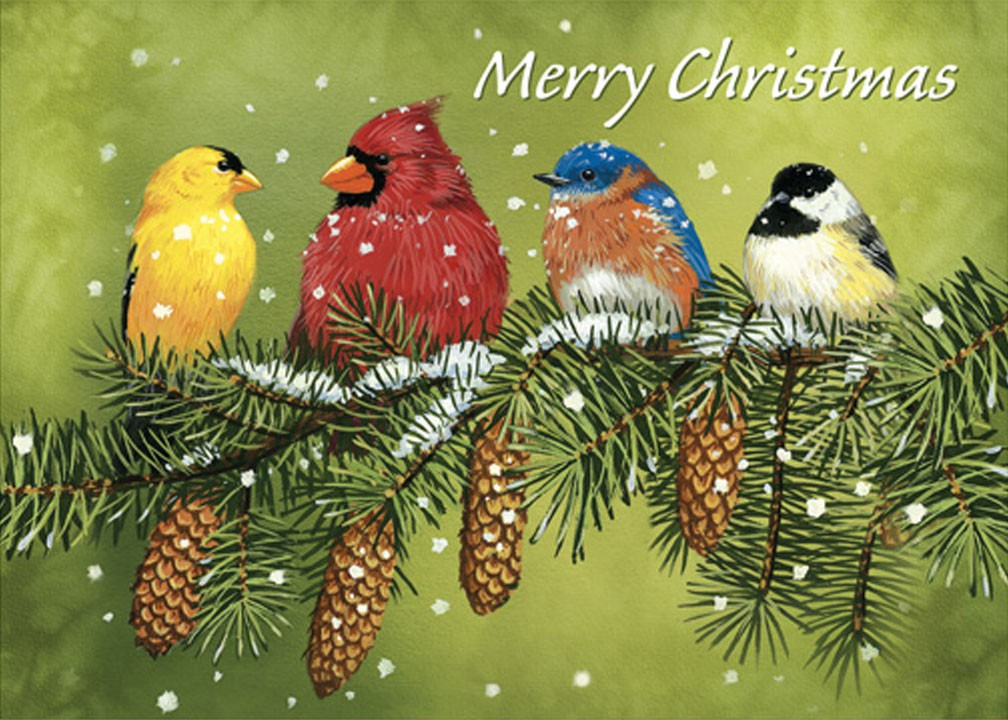 Snowy Feathered Friends Christmas