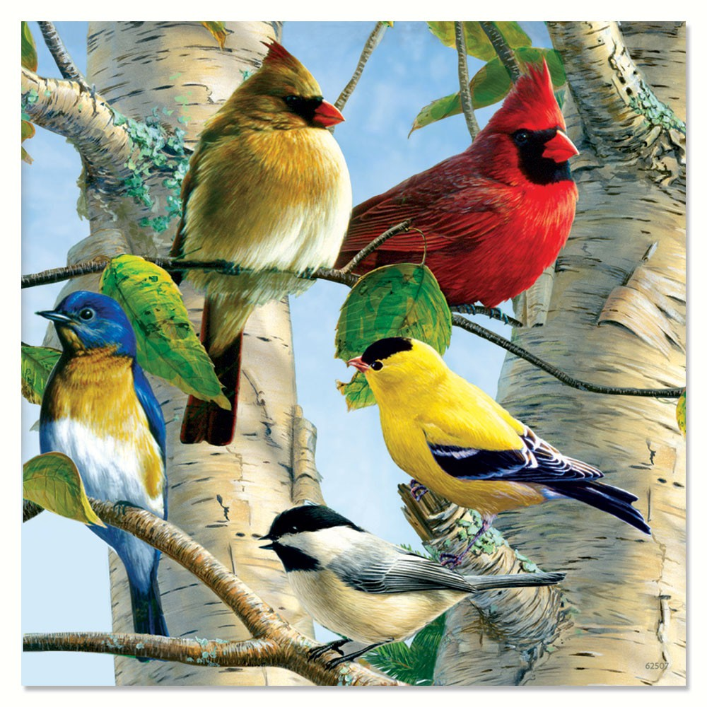 Favorite Songbirds Magnet