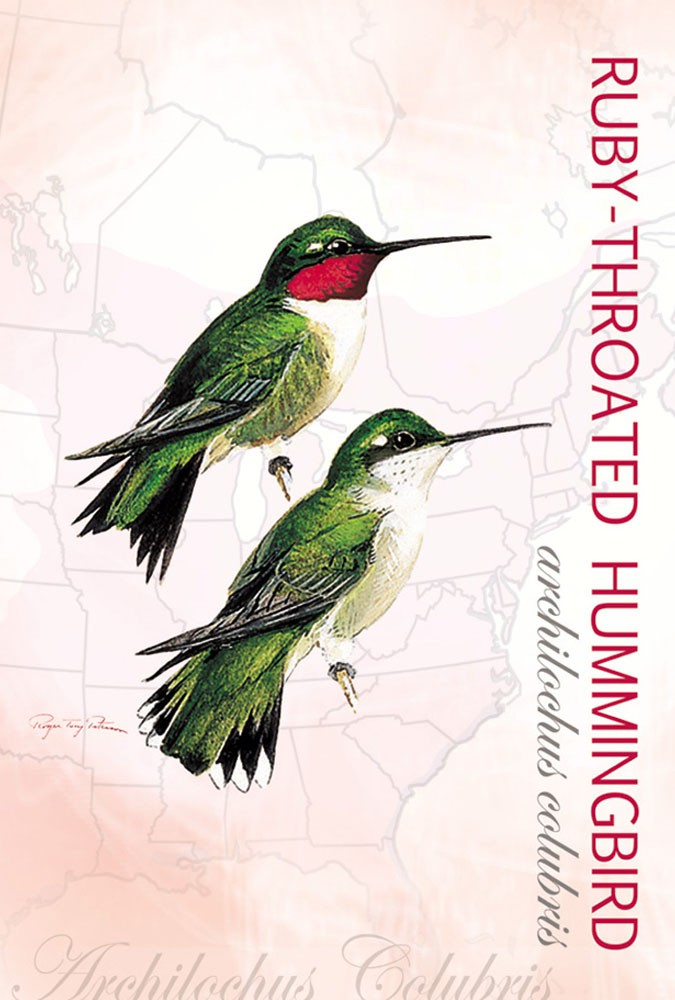 Ruby-Throated Hummingbird Eco Notes