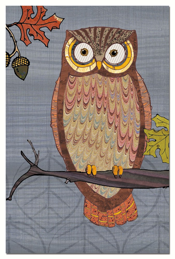 Awesome Owls II Eco Notes