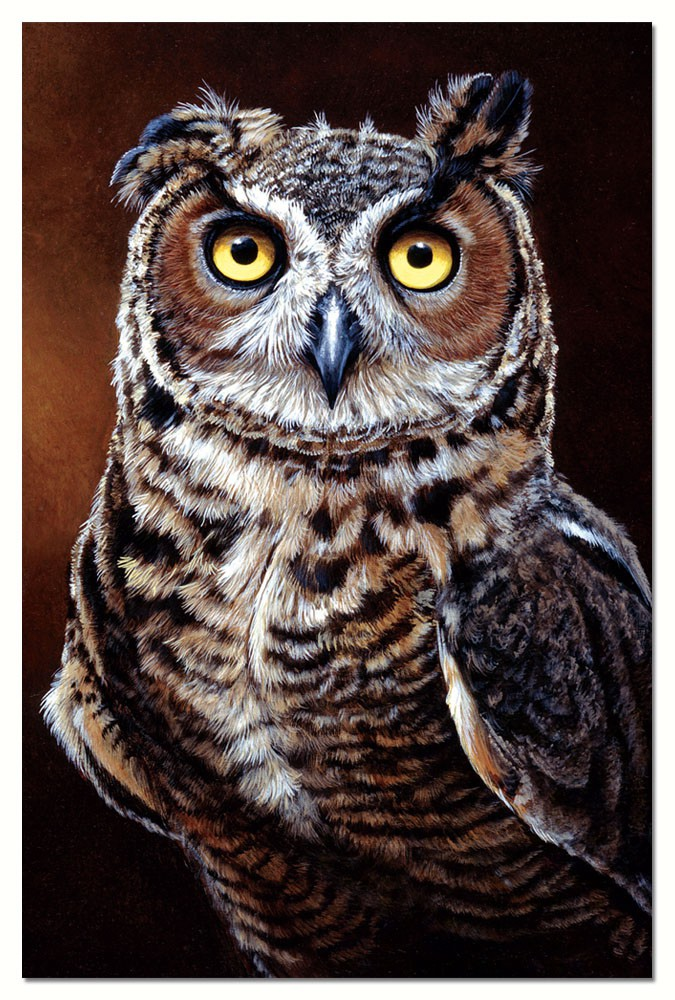 Great Horned Owl Eco Notes