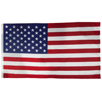 Valley Forge US4PN USA Flag, 4 ft W x 6 ft L, Nylon