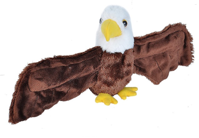Bald Eagle Hugger