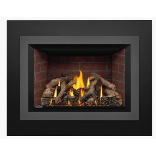 GDIX4N Oakville Gas Insert, Direct Vent NG