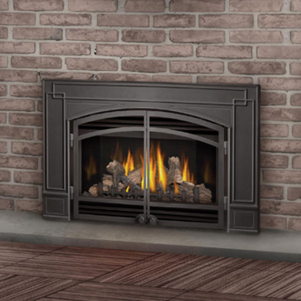 GDI-30NSB Napoleon Direct Vent Gas Fireplace Insert