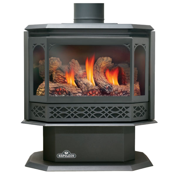 GDS50-1NSB Napoleon Direct Vent Gas Stove