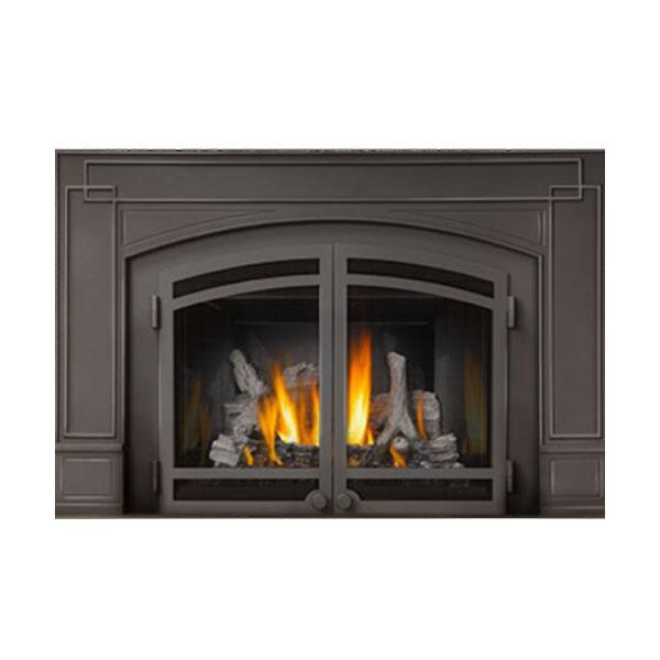 IR3N-1SB Napoleon Basic Fireplace Insert