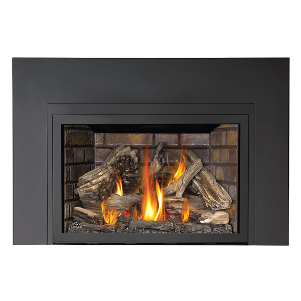 XIR4N-1SB Napoleon Large Deluxe Fireplace Insert