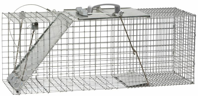 1085 RACCOON SIZED TRAP