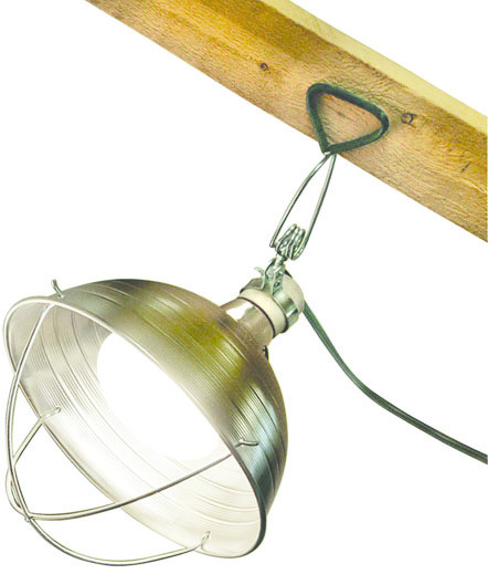 R609 10.5 IN. BROODER LAMP