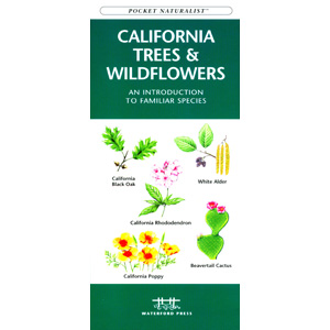 California Trees and Wildflowers