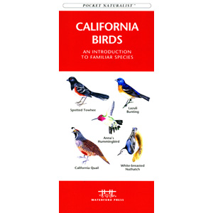 California Birds