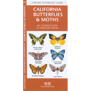 California Butterflies and Moths