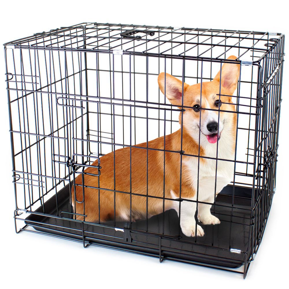 "36"" LARGE Dual-Door Folding Pet Crate with Removable Liner"