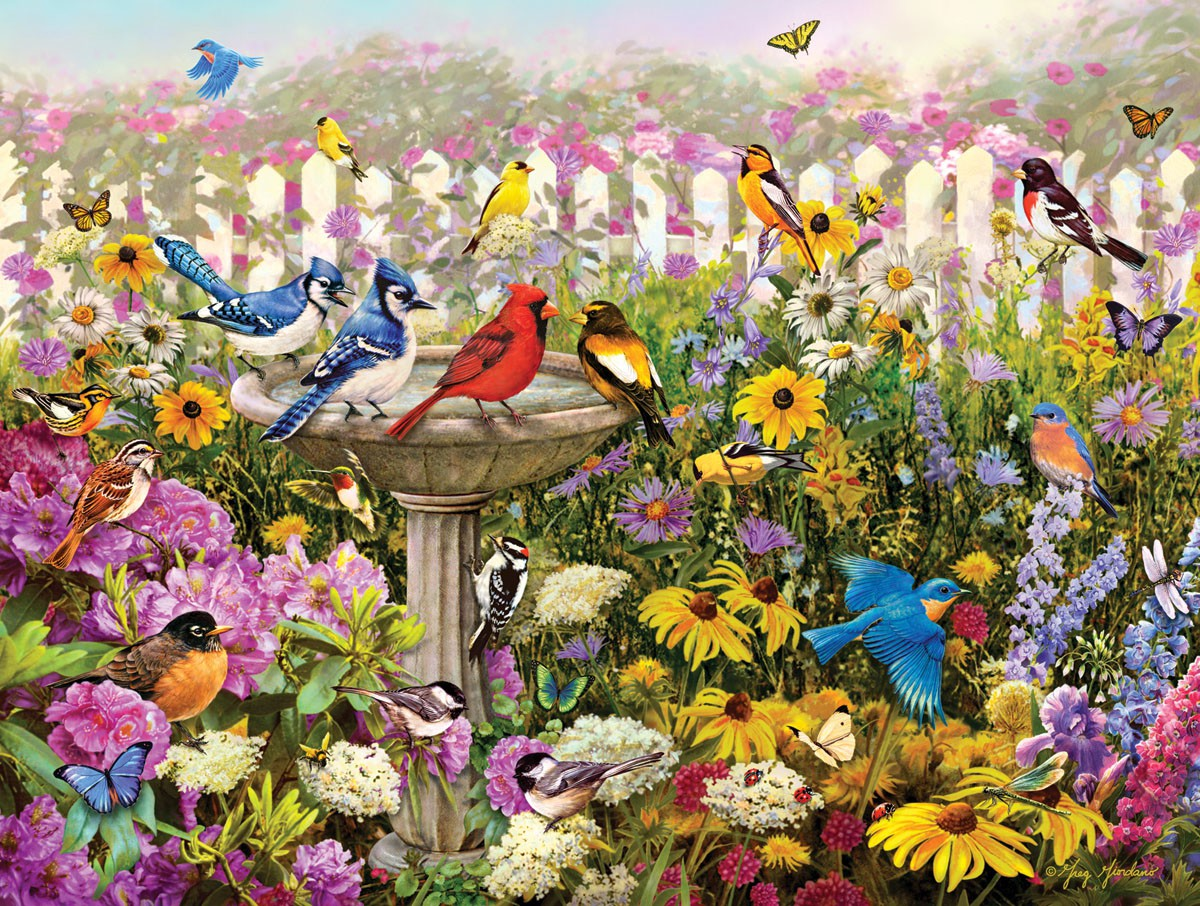Birds of Summer 550 piece Puzzle
