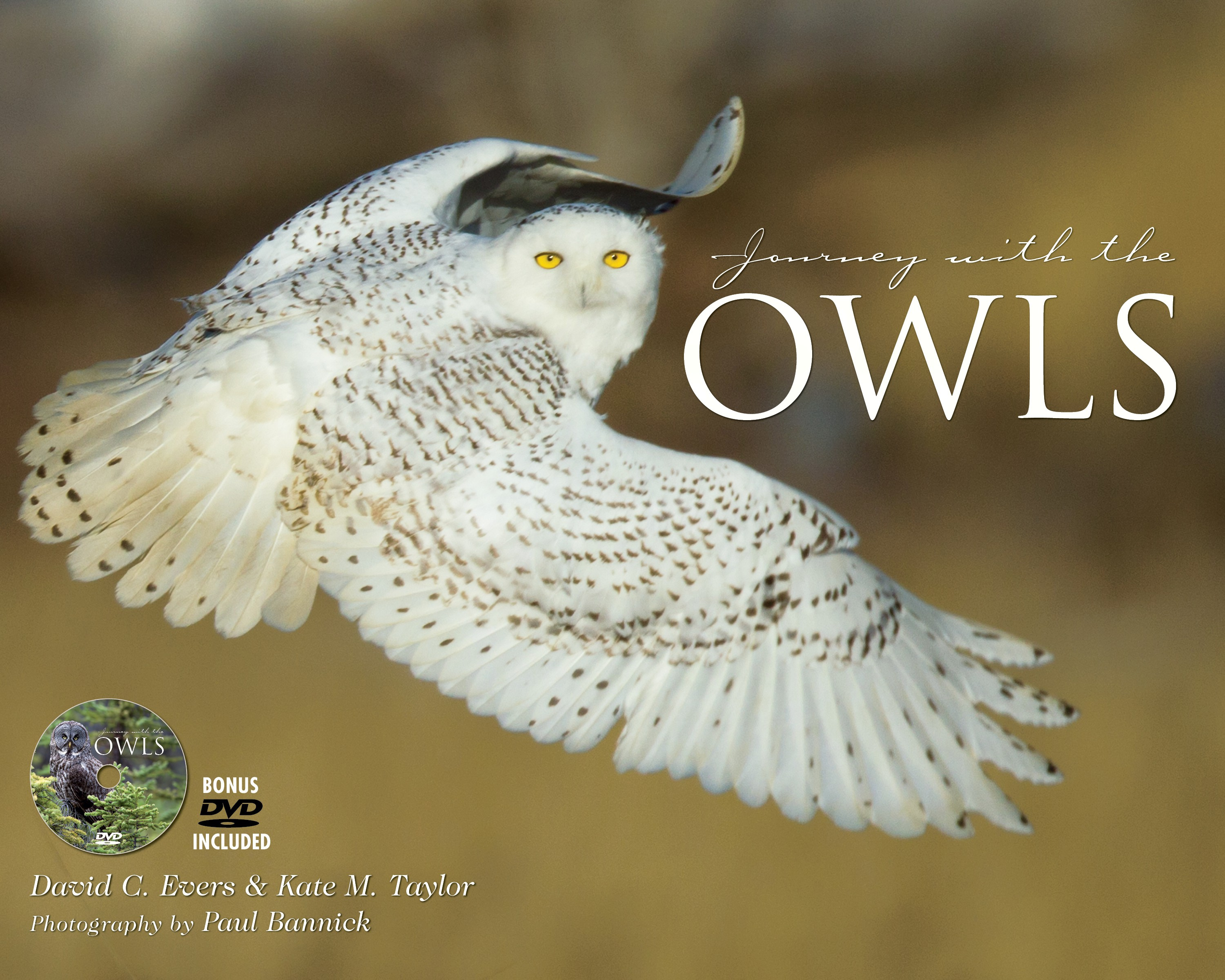 Journey with the Owls (book/dvd)