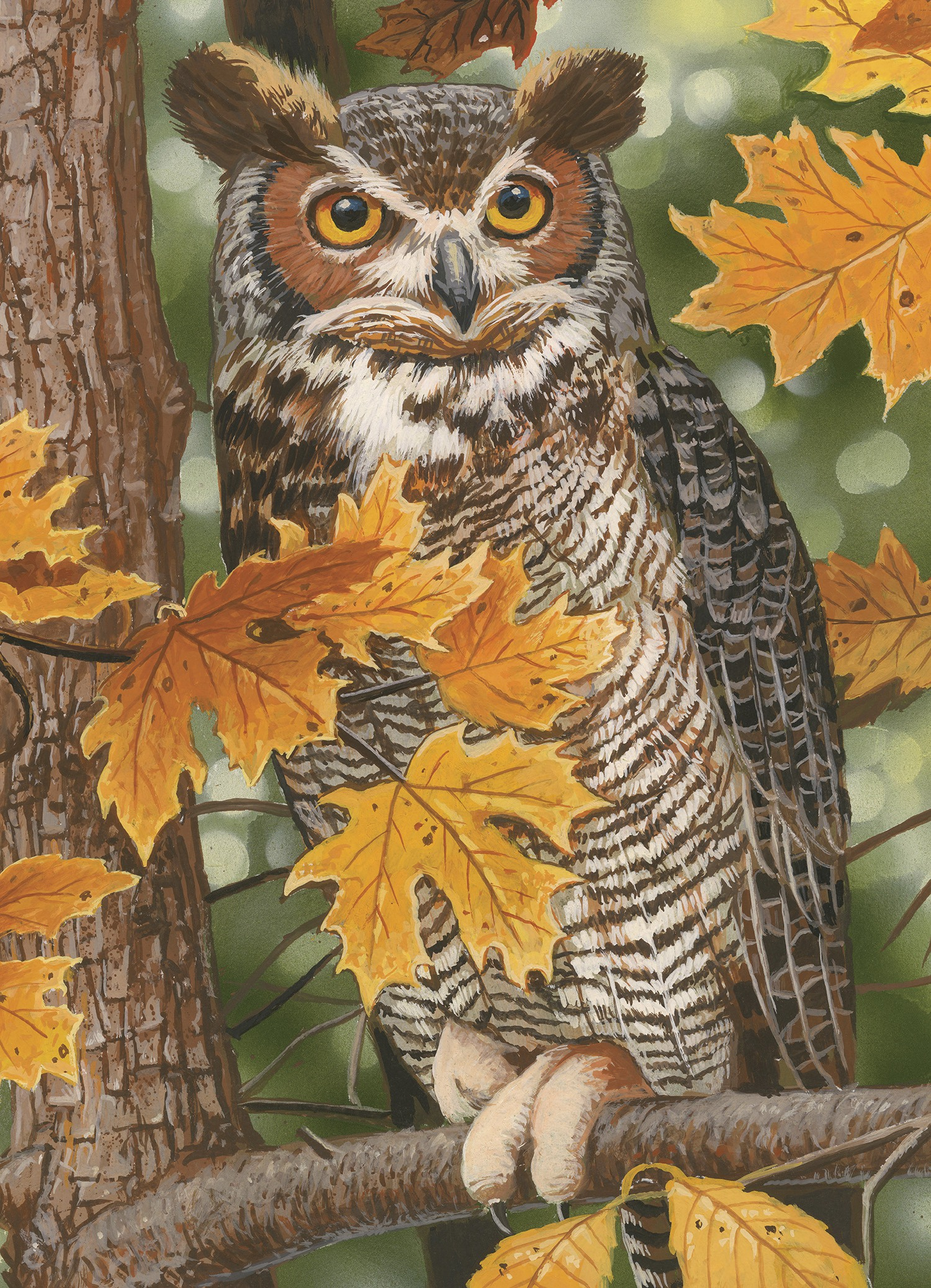 Autumn Owl Puzzle