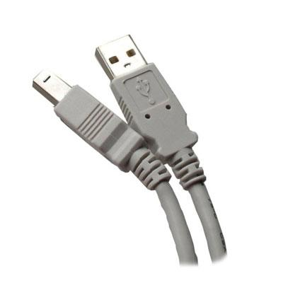 10' USB 2.0 A to B Gray