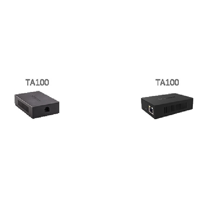 TA100 Analog Gateway