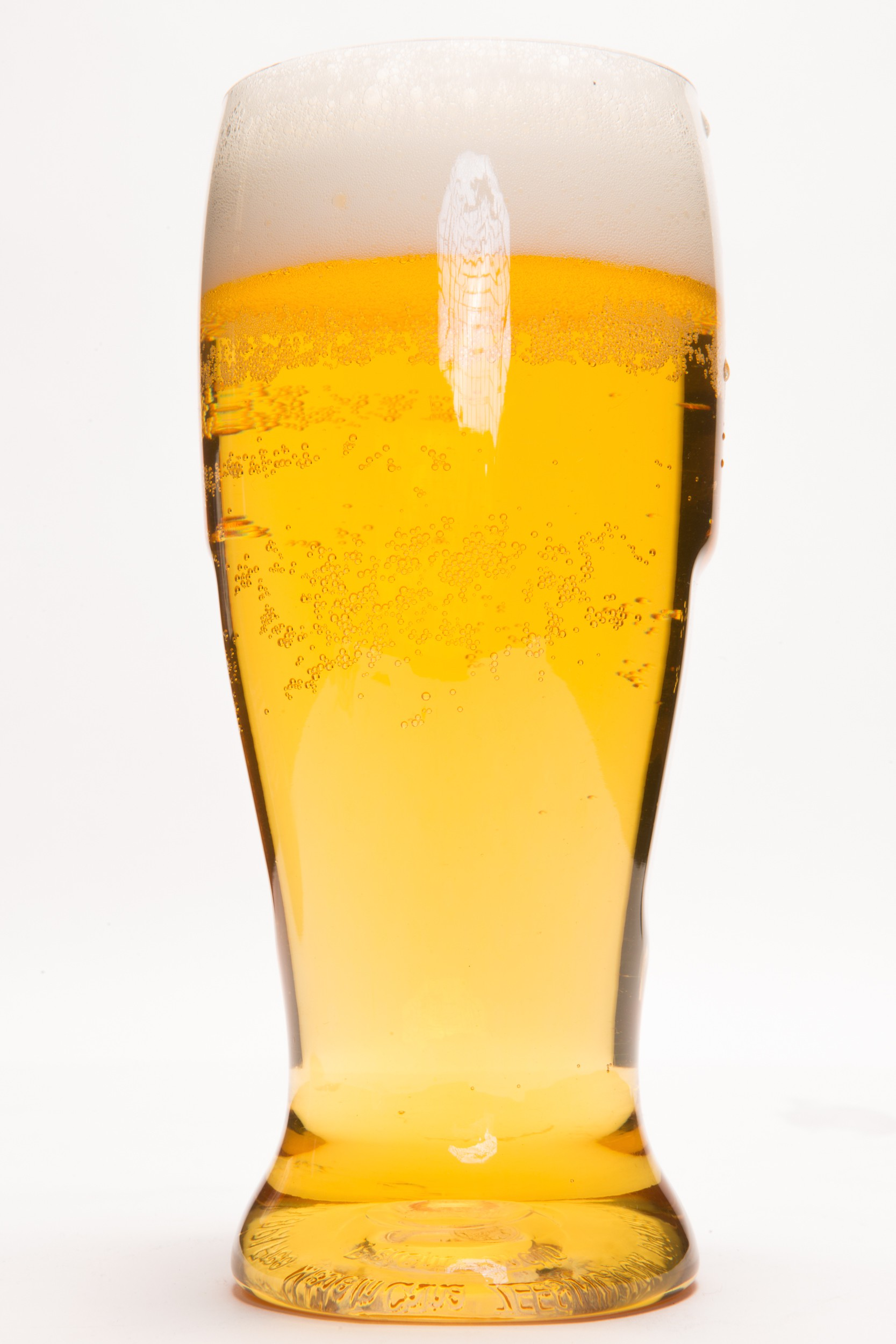 EVER Drinkware Beer Glass Bulk