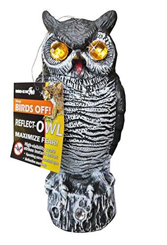 Stationary Owl Decoy