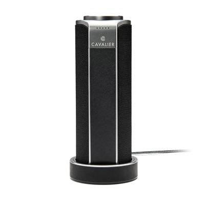 Portable Bluetooth WiFi Spk Bk