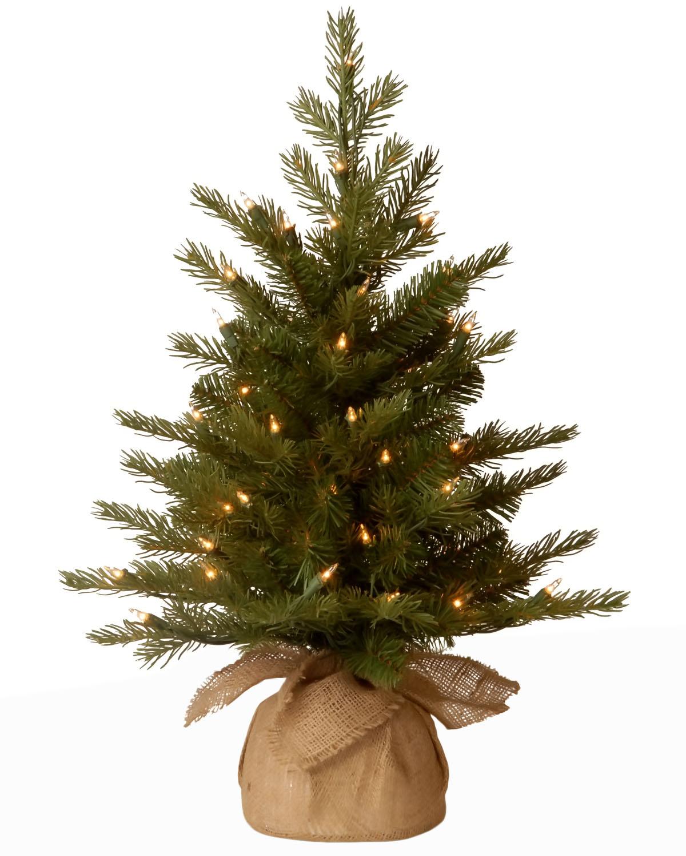 (Open Box) National Tree Company 2'