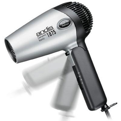 Fold-N-Go Ionic Hair Dryer
