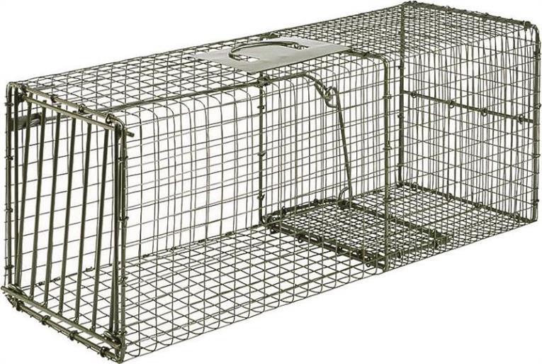 Duke Pecan 1112 Heavy Duty Large Quick Release Standard Cage Trap, 1 Doors, Steel