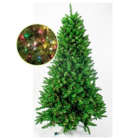 Carolina Tree 900 Mulit 6.5'
