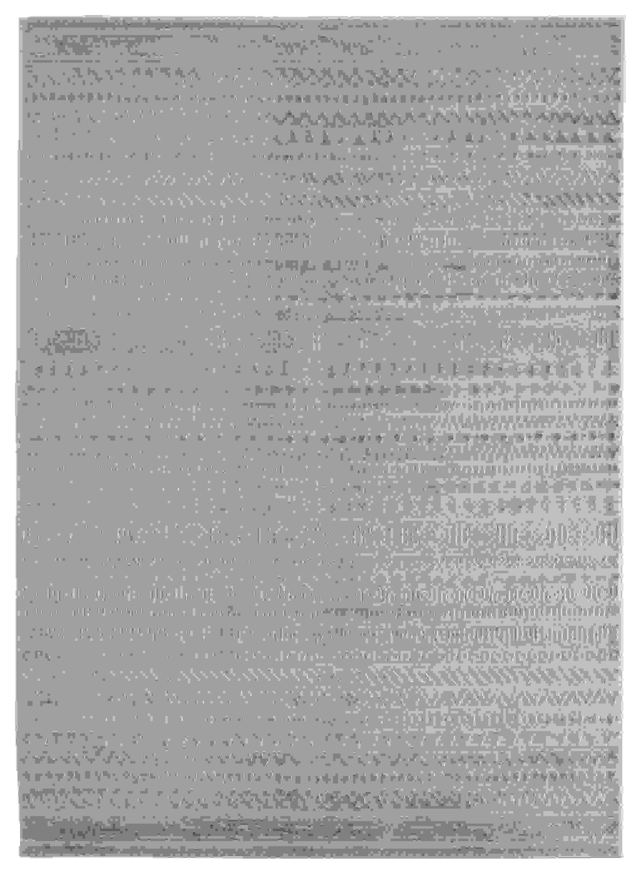 "150"" x 180"" Wheat Polyester / Olefin Oversize Rug"