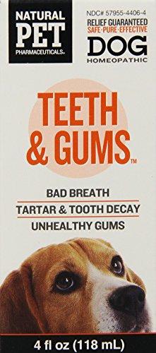 King Bio Homeopathic Natural Pet Dog Teeth and Gums (1x4 Oz)