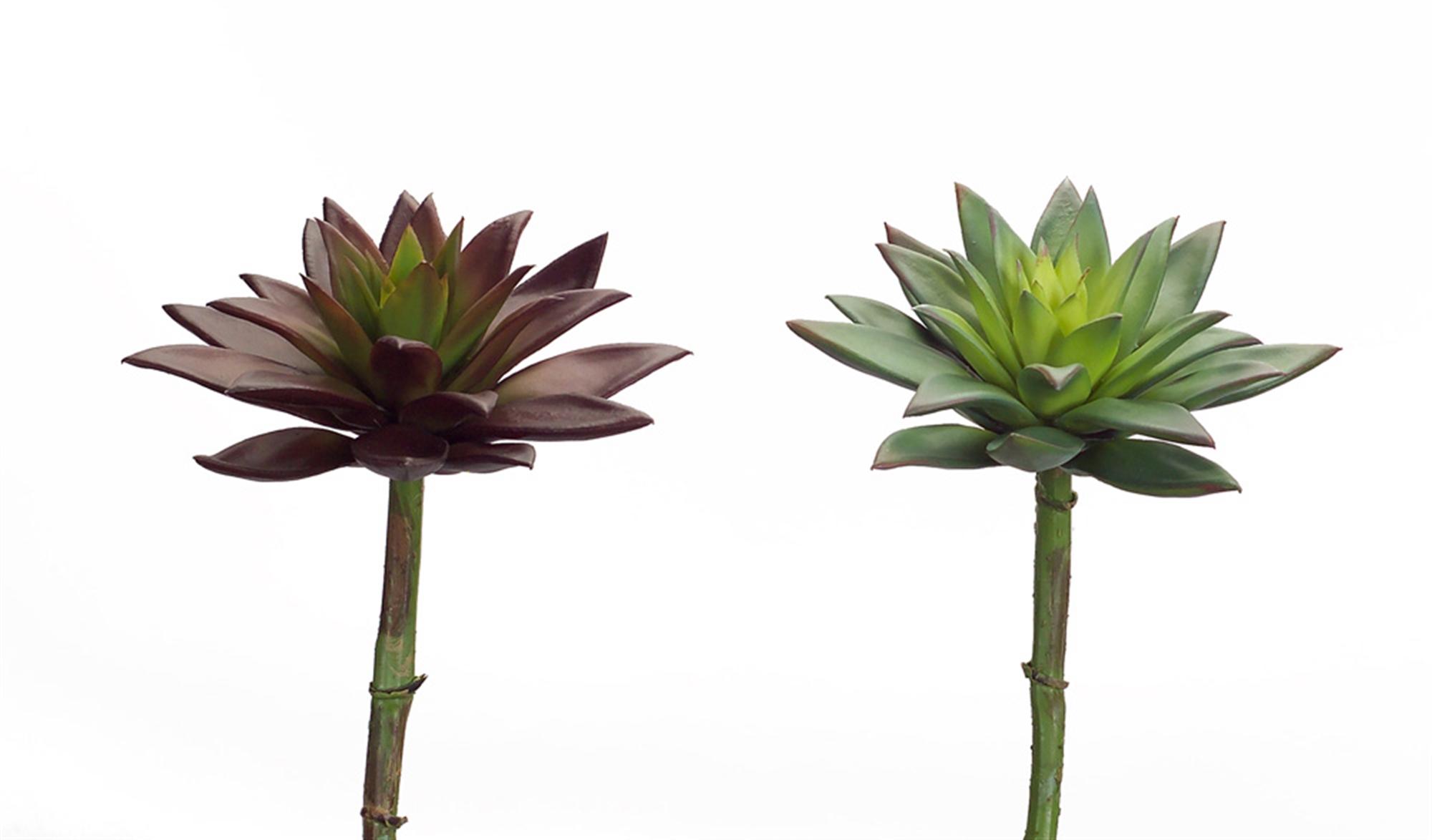 """Succulent Stem (Set of 6) 9""""H Plastic"""