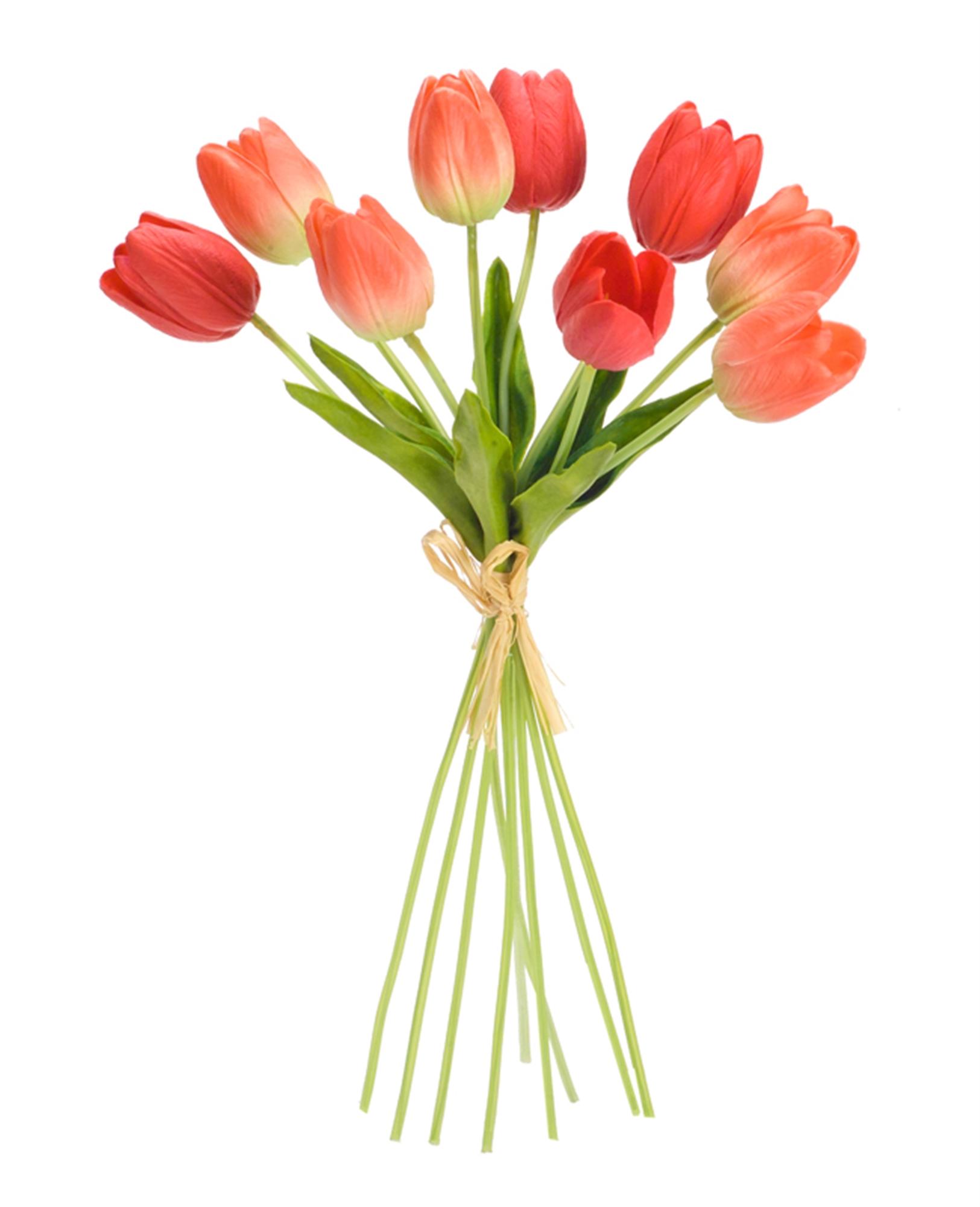 "Tulip Bundle (Set of 6) 15""H"