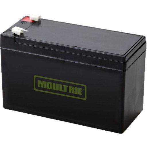 12-volt Rechargeable Battery