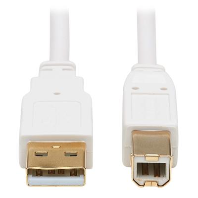 USB-A USB-B ANTIBACTERIAL 10FT
