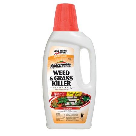 HG-96390 GRASS KILL CONC 2